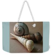 Seashells Spectacular No 29  Weekender Tote Bag by Ben and Raisa Gertsberg