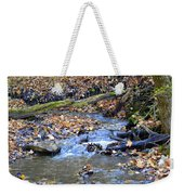 Seasons Change Weekender Tote Bag
