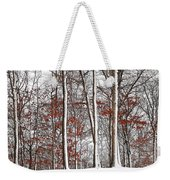 Seasons Converge Weekender Tote Bag