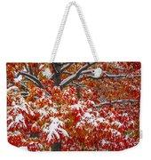 Seasons Of Change Weekender Tote Bag