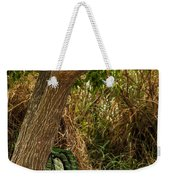 Secluded Park Benches Weekender Tote Bag by Jess Kraft