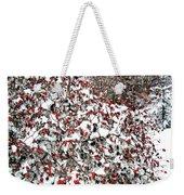 Secluded Winter Haven Weekender Tote Bag