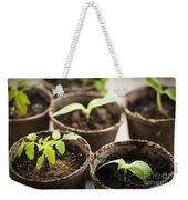 Seedlings  Weekender Tote Bag by Elena Elisseeva
