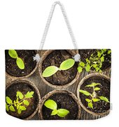 Seedlings Growing In Peat Moss Pots Weekender Tote Bag