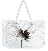 Seeds Weekender Tote Bag by Anne Gilbert