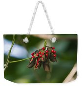 Seeds Of A Tropical Plant India Weekender Tote Bag
