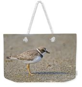 Semi-palmated Plover Pictures 34 Weekender Tote Bag