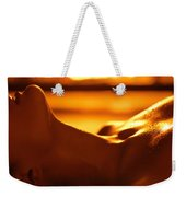 Sensual Photo Of Naked Woman In Front Of Fireplace Weekender Tote Bag