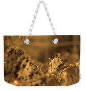 Sepia Cacti Close Up Weekender Tote Bag