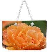 September Rose Weekender Tote Bag