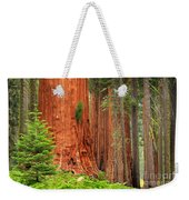 Sequoias Weekender Tote Bag by Inge Johnsson