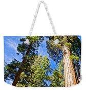 Sequoias Reaching To The Clouds In Mariposa Grove In Yosemite National Park-california Weekender Tote Bag