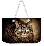 Serious Tabby Cat Weekender Tote Bag