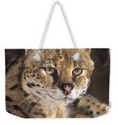 Serval Portrait Wildlife Rescue Weekender Tote Bag