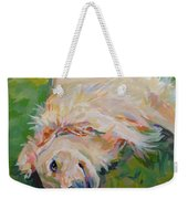 Seventh Inning Stretch Weekender Tote Bag by Kimberly Santini