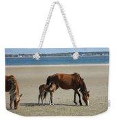 Shackleford Banks Foal Weekender Tote Bag