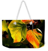 Shades And Shadows Weekender Tote Bag