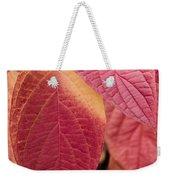 Shades Of Autumn Weekender Tote Bag