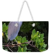 Shades Of Blue And Green Weekender Tote Bag