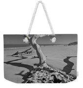 Shadows At Driftwood Beach Weekender Tote Bag