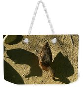 Shadows Of A Mallard Duck Weekender Tote Bag