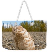 Shaggy Mane Mushroom Grows Through Gravel Surface Weekender Tote Bag