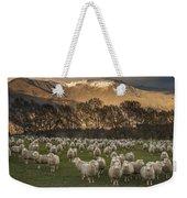 Sheep Flock At Dawn Arrowtown Otago New Weekender Tote Bag