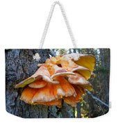 Shelf Fungus In Carl E. Wynn Nature Center In Homer-ak   Weekender Tote Bag