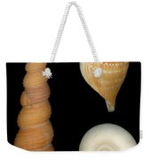 Shell - Conchology - Shells Weekender Tote Bag by Mike Savad