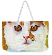 Shelter Sweety Two Weekender Tote Bag