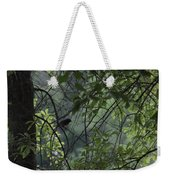 Sheltered From The Rain Weekender Tote Bag
