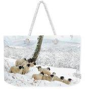 Sheltering Flock Weekender Tote Bag by John Kelly