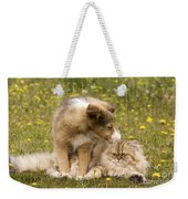 Sheltie Puppy And Persian Cat Weekender Tote Bag