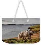 Shetland Pony At Shore  Shetland Weekender Tote Bag