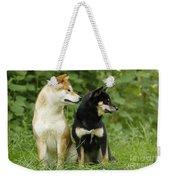 Shiba Inu Dogs Weekender Tote Bag