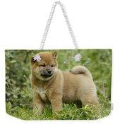 Shiba Inu Puppy Dog Weekender Tote Bag