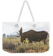 Shiras Bull Moose Weekender Tote Bag