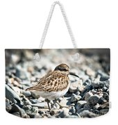 Shorebird Beauty Weekender Tote Bag