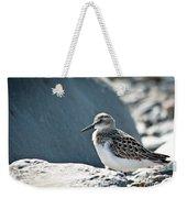 Shorebird Weekender Tote Bag