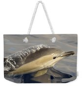 Short-beaked Common Dolphin Azores Weekender Tote Bag by Malcolm Schuyl