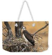 Short-toed Snake Eagle Circaetus Gallicus Weekender Tote Bag