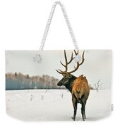 Shortest Distance Elk Weekender Tote Bag