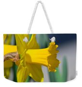 Shout Out To Spring Weekender Tote Bag
