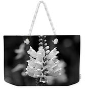 Obedient Plant In Black And White Weekender Tote Bag