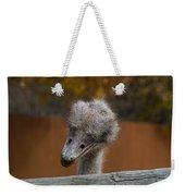Shy Bird Weekender Tote Bag