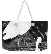 Shy Swans Weekender Tote Bag