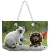 Siamese Kitten And Dachshund Puppy Weekender Tote Bag