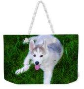 Siberian Huskie Weekender Tote Bag