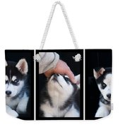Siberian Husky Puppies Mans Best Friend Weekender Tote Bag