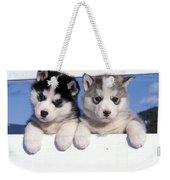 Siberian Husky Puppies Weekender Tote Bag